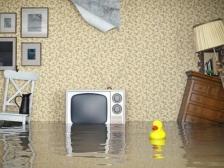 Страхование квартиры: что необходимо знать